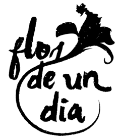 Flor de un dia - Restaurante Vegan-friendly