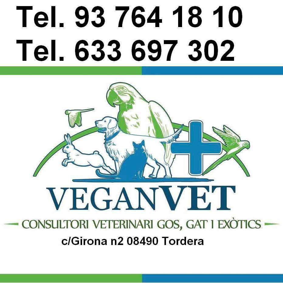 VeganVet - Veterinaria vegana