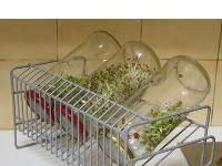 Germinadores Caseros - Tapas para germinar