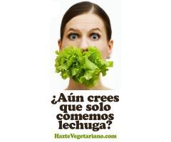 Haztevegetariano.com - Información