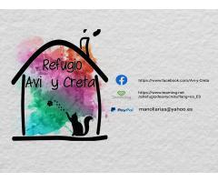 Avi y Creta - Refugio de Animales
