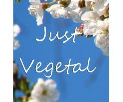 Just Vegetal - Recetas Veganas