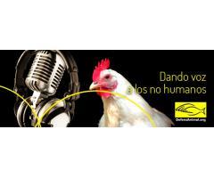 Dando voz a los no humanos - Radio