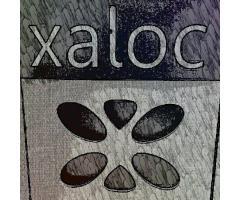 Xaloc Lounge - Restaurante Vegan-friendly