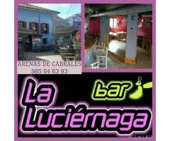 La Luciérnaga - Restaurante Vegan-friendly