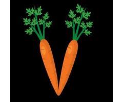 V de Vegetta - Restaurante Vegetariano