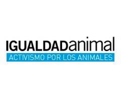 Fundación Igualdad Animal